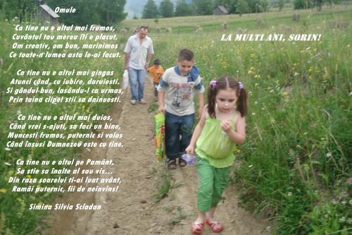 ECURSIE MUNTELE FRUMOSU PLIN DE FLORI 005