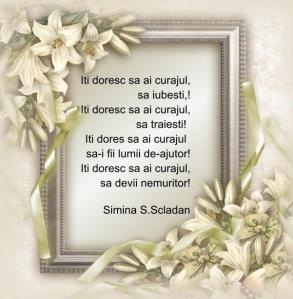 ITI DORESC...