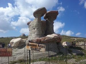 Babele sunt formațiuni stâncoase situate în apropiere de vârful Baba Mare (2292 m), situat în masivul Bucegi din Carpații Meridionali. Important obiectiv turistic, Cabana Babele este situată sub vârful cu același nume și este punctul de plecare central în drumețiile din munții Bucegi.